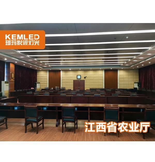 江西省农业农村厅会议室灯光解决方案